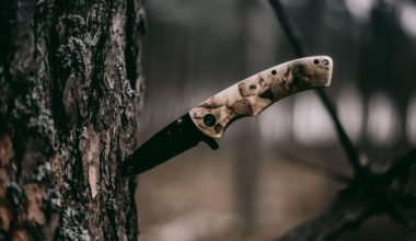 One of the best neck knives stuck in a tree