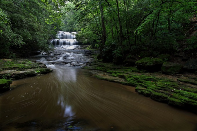 A river in a forest in Ohio
